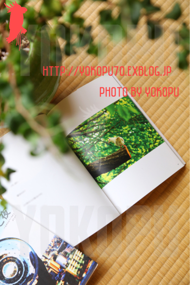 d0330095_02010878.jpg
