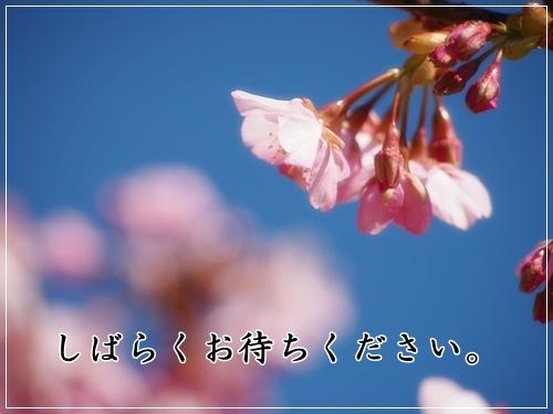 d0013149_23040417.jpg