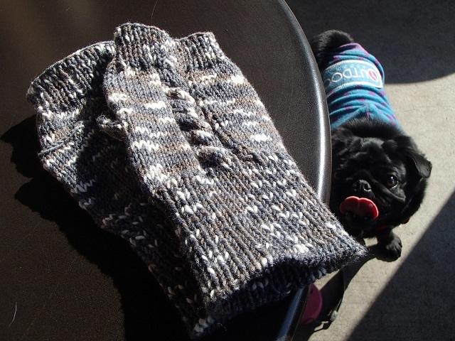 手袋 と 真心が・・・ 心に沁みた。 (黒い パグと 編)_d0105967_17084852.jpg