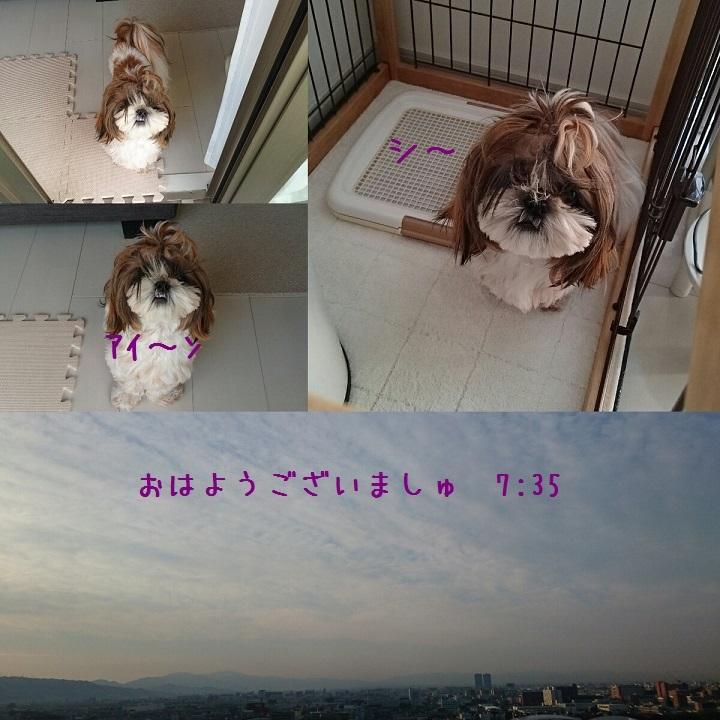 c0363378_15185179.jpg