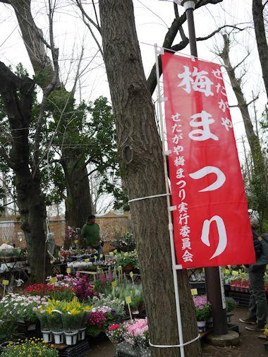 羽根木公園・梅まつりに行って来たよ。_c0090198_13504078.jpg