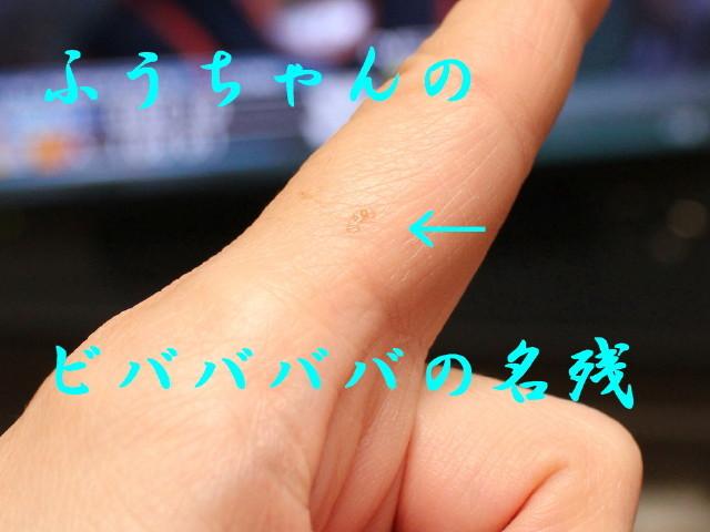 c0365734_22395619.jpg