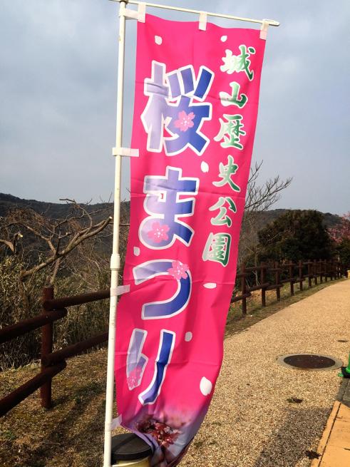 上関の桜まつり(河津さくら)_f0183846_15340470.jpg