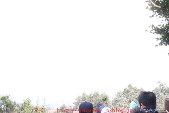 d0105749_20072596.jpg