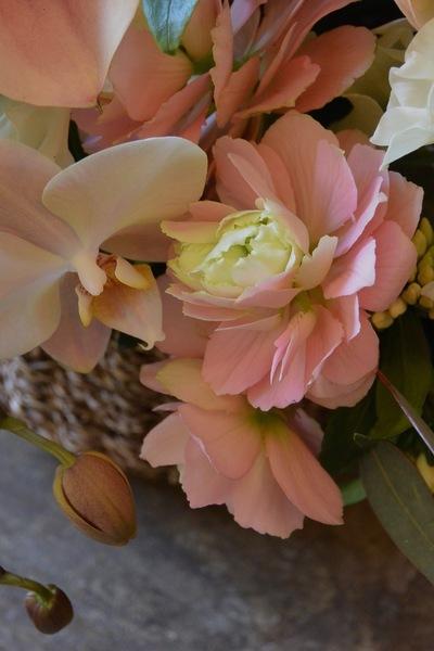沈丁花の香り。。。_a0229658_7103654.jpg