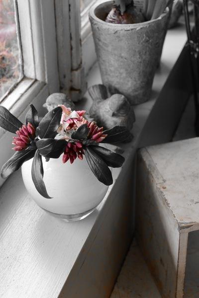 沈丁花の香り。。。_a0229658_838749.jpg