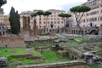 ローマの休日 ~世界ネコ歩き ローマ~_f0204175_15283278.jpg