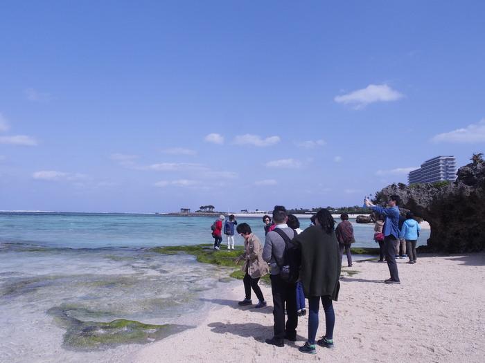 沖縄の海_a0149488_8414474.jpg