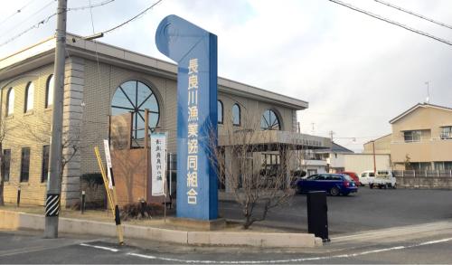 長良川漁協へ_b0029488_01252622.jpg