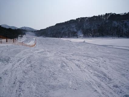スキー_e0161791_1823169.jpg
