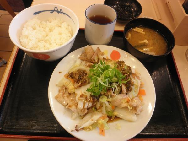 松屋の豚肉とたっぷり冬野菜炒め    箕面店_c0118393_9391940.jpg