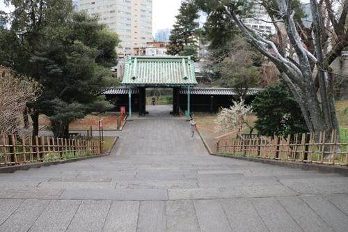 史跡 湯島聖堂・・・4_c0075701_21214098.jpg