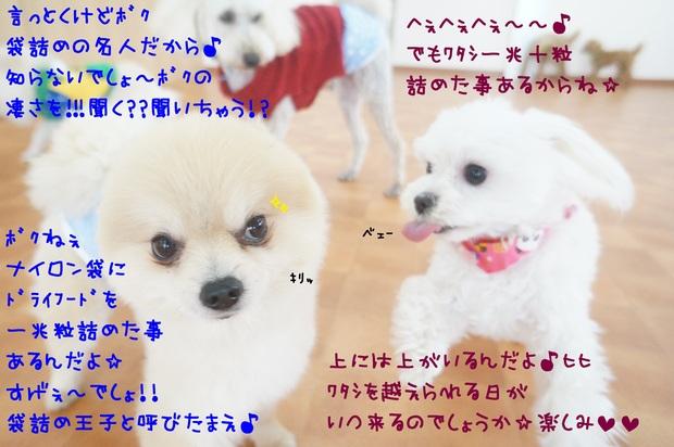 d0220513_1425320.jpg