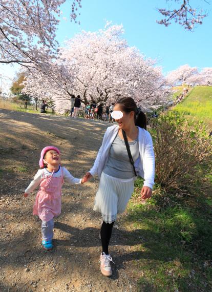 第25回埼玉県都市公園写真コンクール 入選_b0251929_7264414.jpg