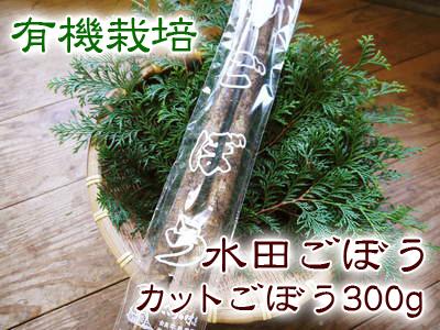 有機栽培キャベツ 平成28年度産完売御礼!!_a0254656_19243931.jpg