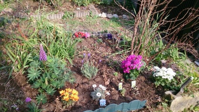春の庭作り_d0116059_22213448.jpg