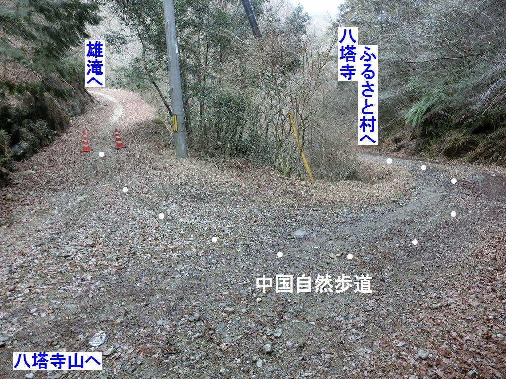 b0185573_1140213.jpg