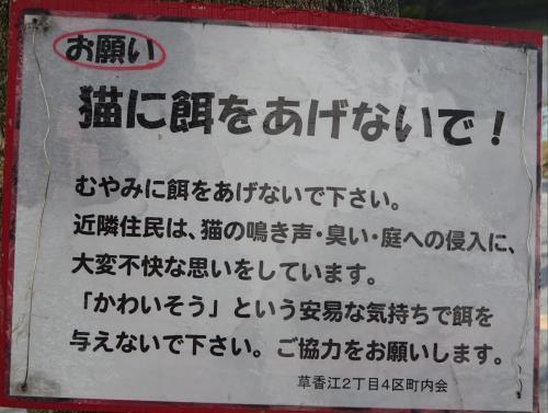 f0166694_18380337.jpg