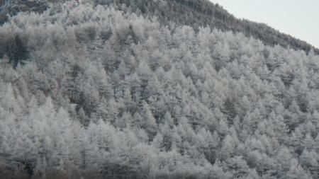 霧氷の朝_e0120896_06263255.jpg