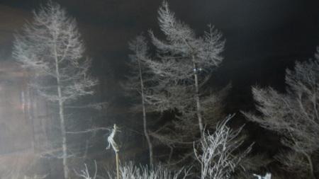 霧氷の朝_e0120896_06271678.jpg