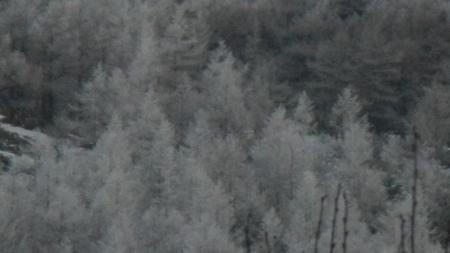 霧氷の朝_e0120896_06273411.jpg