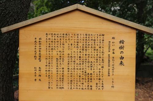 史跡 湯島聖堂・・・6_c0075701_9145874.jpg