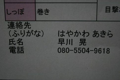 f0242002_2230315.jpg