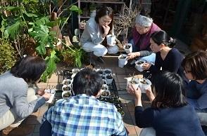 桜盆栽展はじまりました_d0263815_2071749.jpg