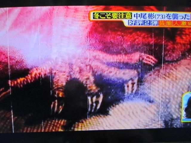 MBSのTV番組「サタデープラス」(2/20放送分)での私の作品使用ご報告☆_a0093332_9444017.jpg