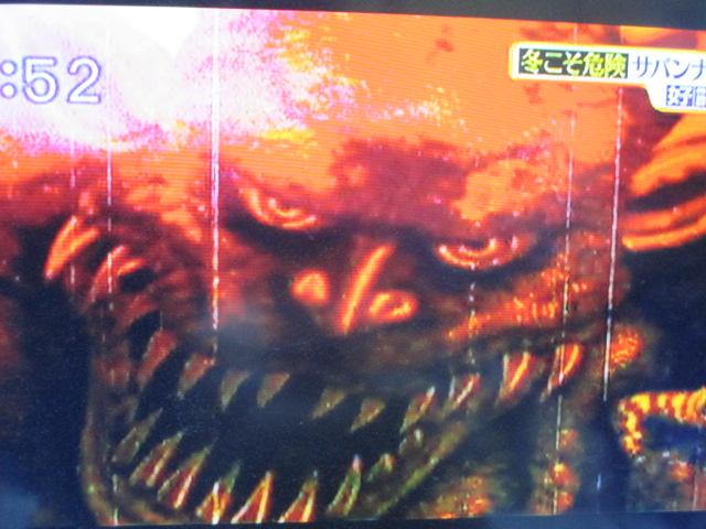 MBSのTV番組「サタデープラス」(2/20放送分)での私の作品使用ご報告☆_a0093332_9462224.jpg