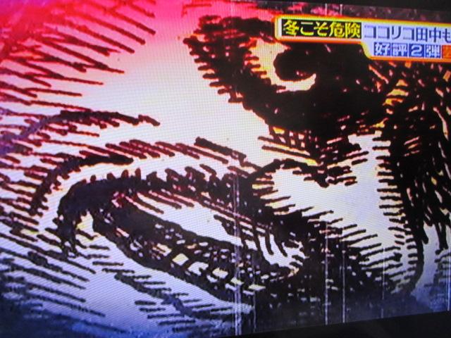 MBSのTV番組「サタデープラス」(2/20放送分)での私の作品使用ご報告☆_a0093332_949456.jpg
