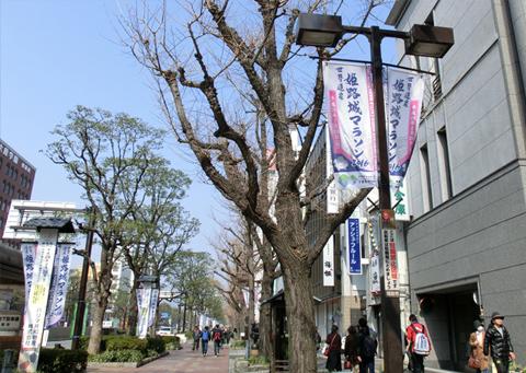「世界遺産 姫路城マラソン2016」_c0141944_20314712.jpg
