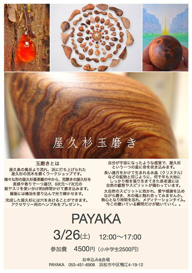 3/26(土)屋久杉玉磨き_a0252768_20060479.jpg