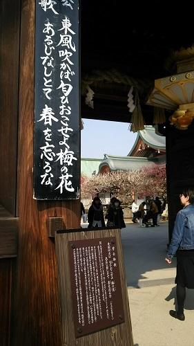 京都はええとこだすな~_e0272869_12022094.jpg