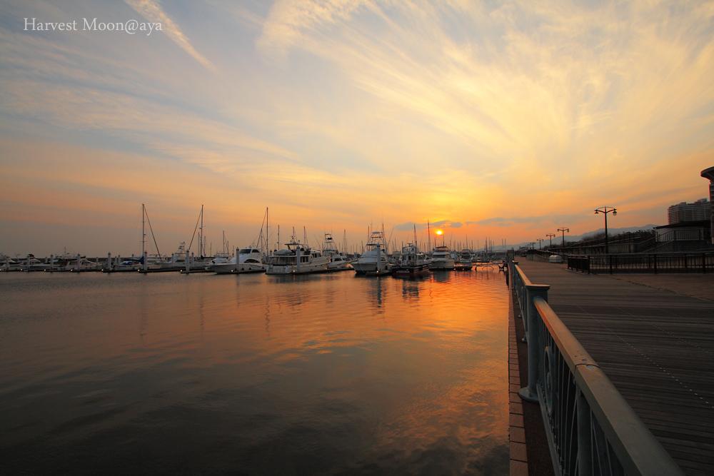 Yacht harbor_b0208495_23353750.jpg