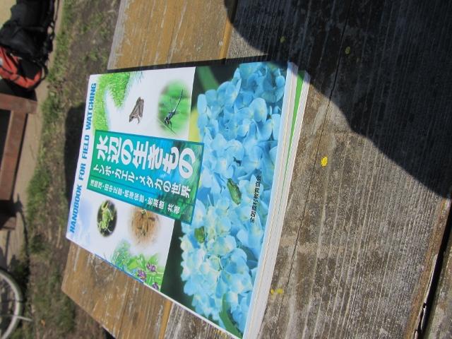 カエルの卵・・・谷津の学校最終回_e0033301_14214127.jpg