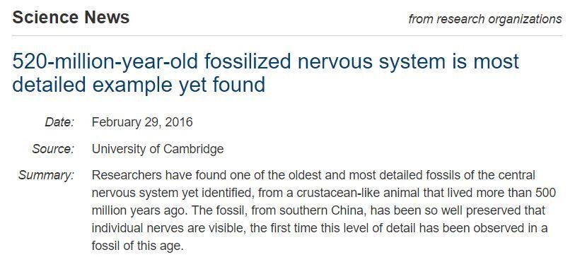 寒さの戻りとカンブリア紀の化石の解析_c0025115_19155057.jpg