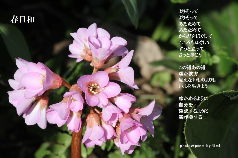 f0351844_14130114.jpg