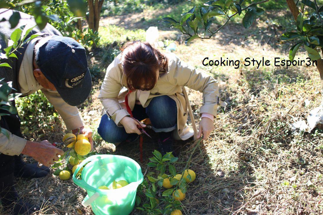 おうち時間に手作り柑橘ピールを楽しみましょ、動画・リアルレッスン募集中!お席きわずかです。_c0162653_11400750.jpg