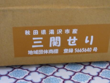 b0324461_11214713.jpg