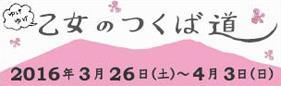 今年も参加します 乙女のつくば道♪_e0143294_19453530.jpg