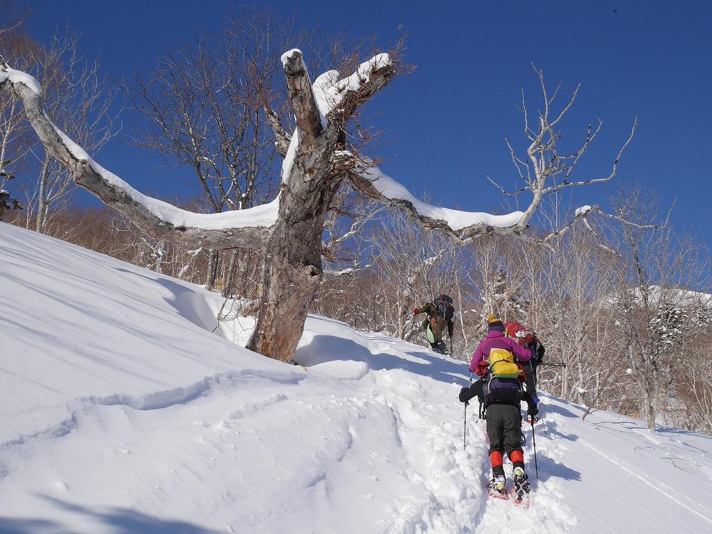 オコタンペ山、漁岳、小漁山からオコタンペ湖、2月28日-オコタンペ山から漁岳編-_f0138096_11313736.jpg