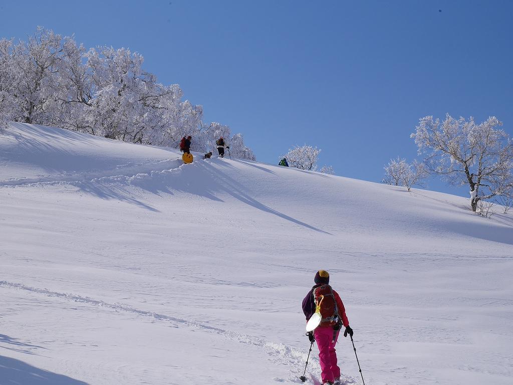 オコタンペ山、漁岳、小漁山からオコタンペ湖、2月28日-下山編-_f0138096_22532013.jpg
