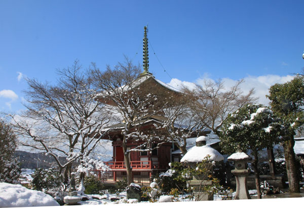 春の淡雪2 三明院~松ヶ崎大黒天へ_e0048413_15574298.jpg