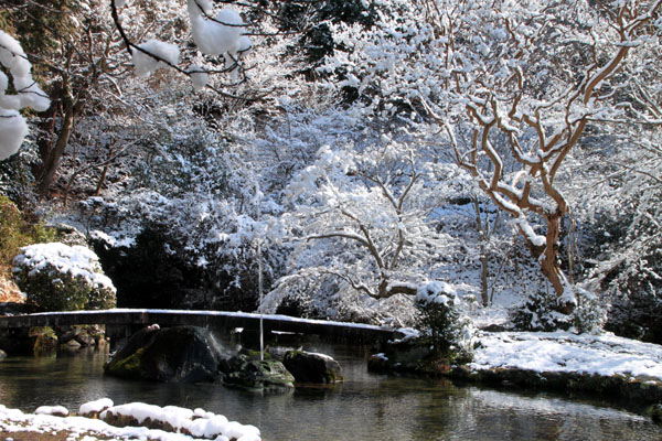 春の淡雪2 三明院~松ヶ崎大黒天へ_e0048413_1558204.jpg