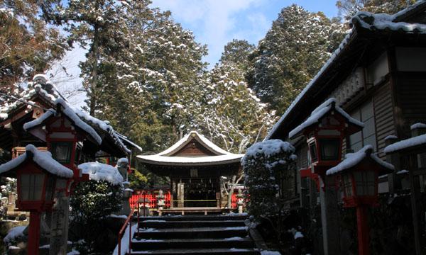 春の淡雪2 三明院~松ヶ崎大黒天へ_e0048413_1558767.jpg