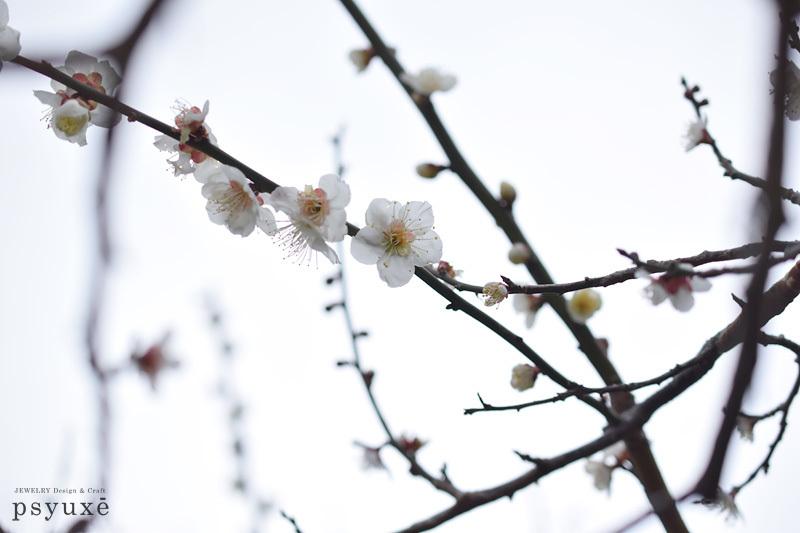 甘い香り_e0131432_11370586.jpg