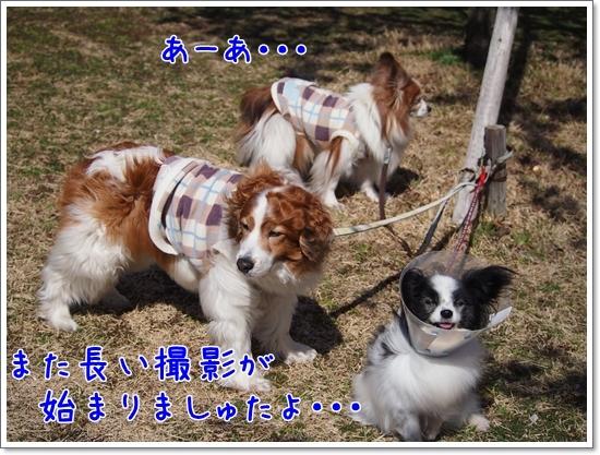 d0013149_00214957.jpg