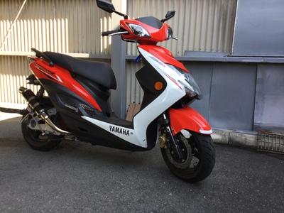 シグナスXにバイクザシートインサイド_e0114857_21492791.jpg