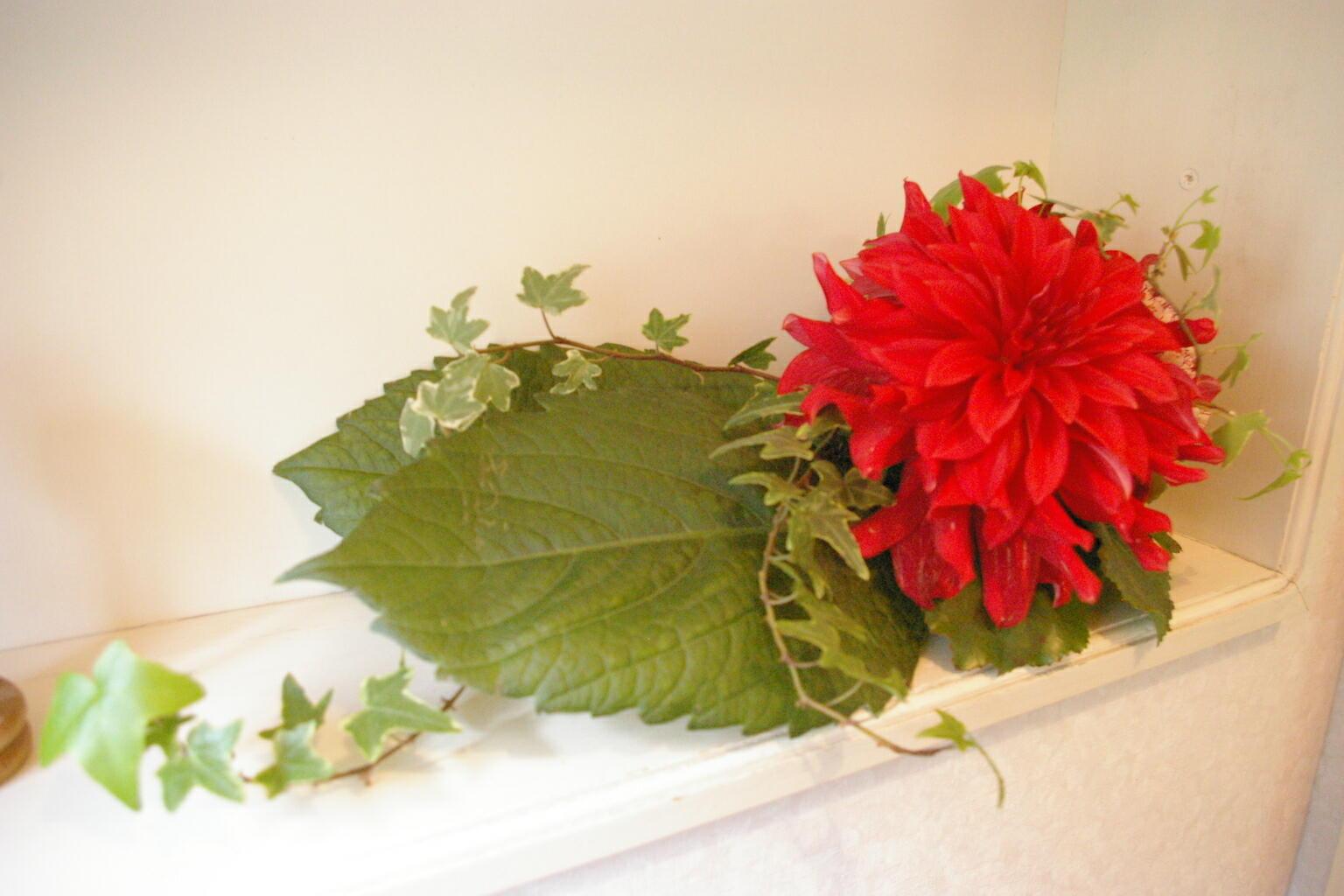 今週のトイレの花。_d0179763_13373049.jpg